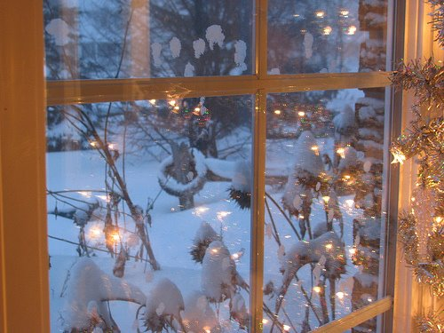 ~ Winter Dreams ~