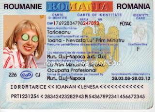 Ioana Tariceanu CI complet