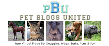 Pets Blog United