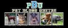 Pets Blog United