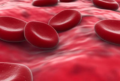 Blood Cells Cancer or Leukemia and All You Need to Know