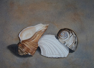 Watercolor Seashell Painting