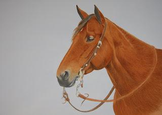 Watercolor Horse Portrait Commission