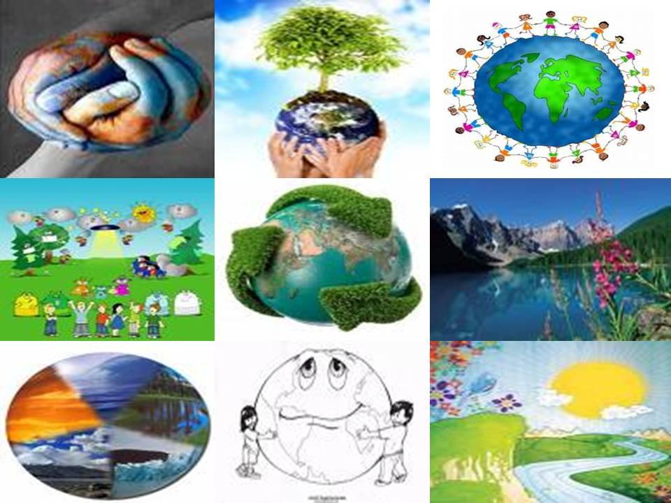 El medio ambiente el medio ambiente for 5 cuidados del suelo