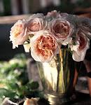 Rose antiche profumate