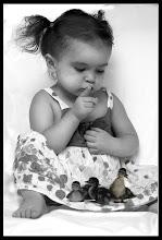 Amo tutti gli animali, le piante, i sassi...