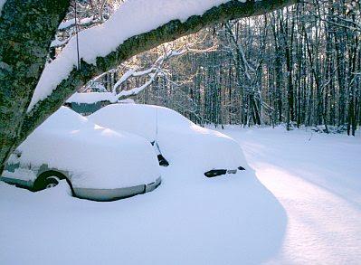 Snow January 2010 #6
