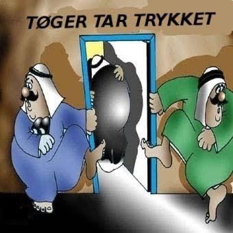 Tøger Seidenfaden cartoon