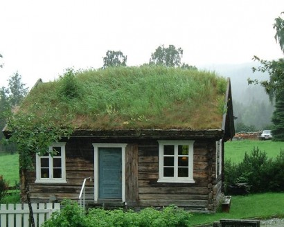 Wood Design Collective Grass Roofs