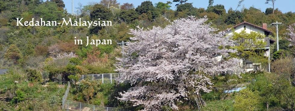 Kedahan-Malaysian @ Japan