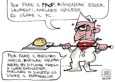 Gava Satira Vignette dialetto pappagallo