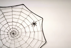 The Brahmins asserted that the world arose from an infinite spider
