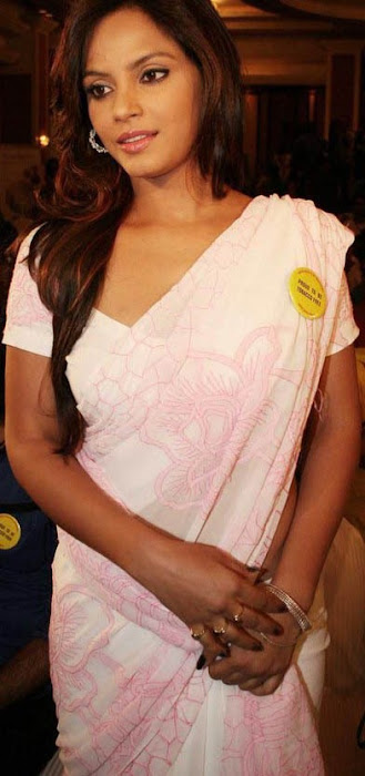 neetu chandra in saree actress pics