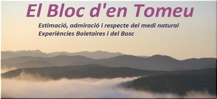 El Bloc d'en Tomeu