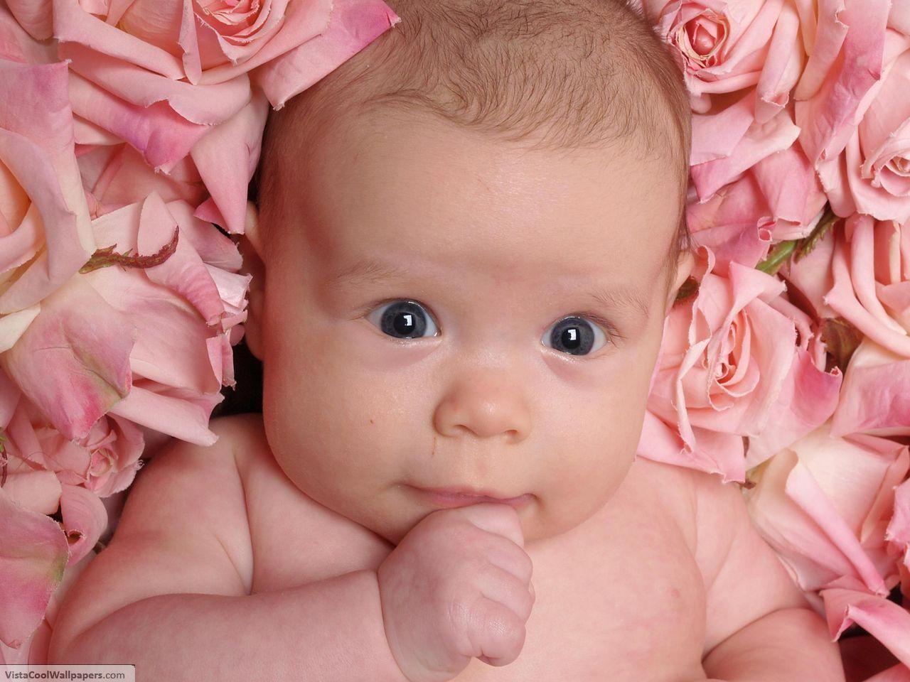 http://1.bp.blogspot.com/_mhVSKanXNRo/TUzevHL4QRI/AAAAAAAAARA/xdfAGcf3TjQ/s1600/Pink+Flowers+Pink+Baby.jpeg