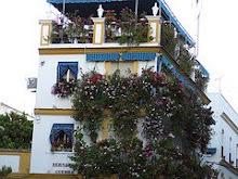 Sevilla hermoso balcón con flores