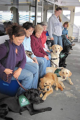 Pups and people huddled together on the ferry for warmth