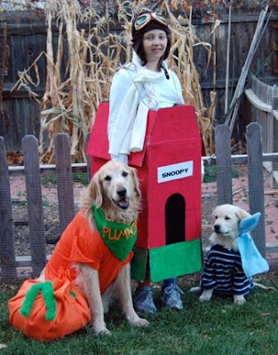 A puppy raiser and two pups dressed in Peanuts characters Halloween costumes.