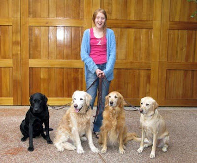 Cooper Jacob with a group of four foster care dogs