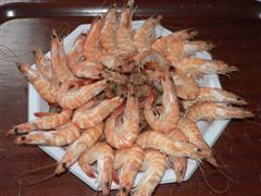 assiette de crevettes à la dégustation