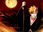 Bleach Anime Gallery