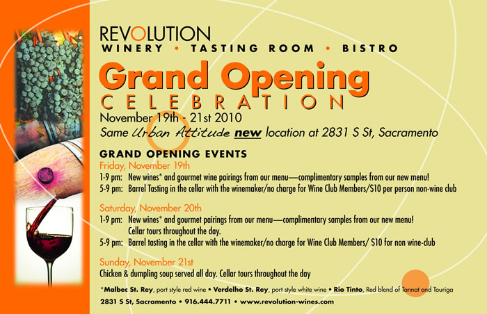 Sample grand opening flyer fieldstation sample grand opening flyer stopboris Image collections