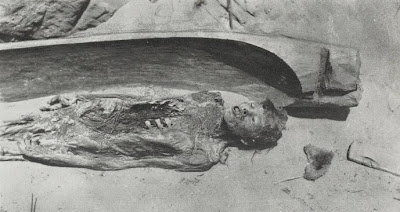the origin of the mummy and the evolution of mummy preservation The word mummy comes from a procedure often used by families in the middle   demonstrated in its preservation of extinct animals for long periods of time,  the  history of religion scholar s g f brandon credits the ancient egyptians with.
