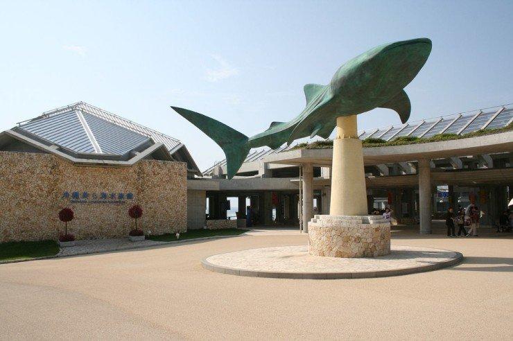 [Image: okinawa_churaumi_aquarium_24.jpg]