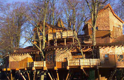 biggest treehouse in the world 2013 - Biggest House In The World 2013