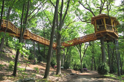 Doob picture coolest tree houses ever built for Houses built in trees