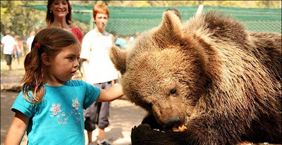 Kebun Binatang Paling Berbahaya di Dunia - Lujan Zoo33