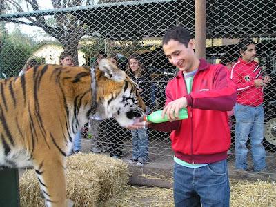 Kebun Binatang Paling Berbahaya di Dunia - Lujan Zoo9