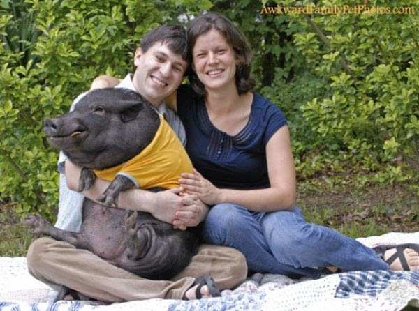 Damn Cool Pictures: Awkward Family Photos with Pets