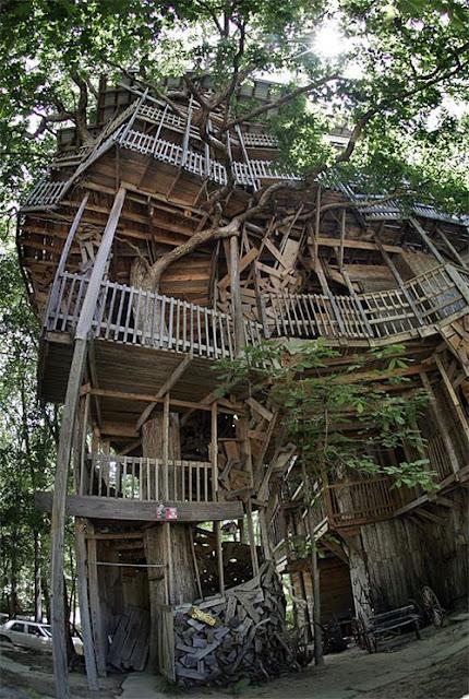 http://1.bp.blogspot.com/_mmBw3uzPnJI/TEb-m7Y1xpI/AAAAAAABdRE/b-sIC9KjGLg/s400/Worlds_Largest_Tree_House_03.jpg