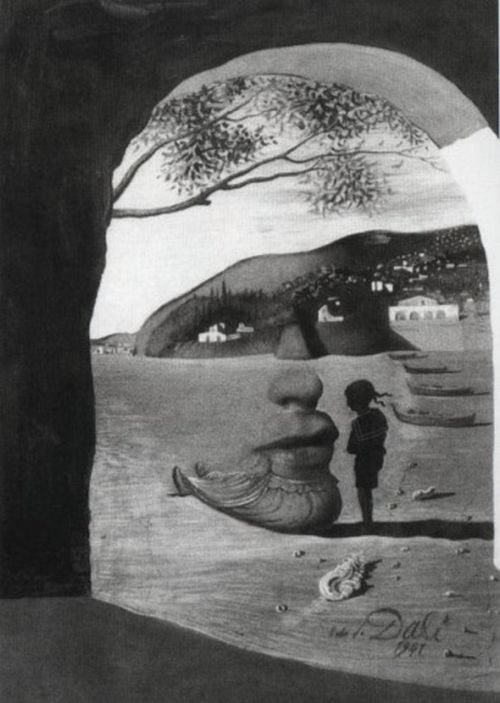 Optical illusions in salvador dali s paintings damn cool for All of salvador dali paintings