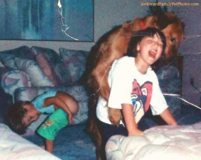 Awkward Family Photos with Pets - Part 2 ~ Damn Cool Pictures: http://www.damncoolpictures.com/2010/09/awkward-family-photos-with-pets-part-2.html