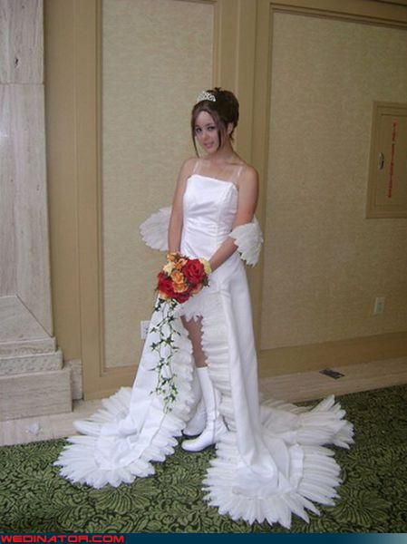 Funny Wallpaper Free Picturesf Funny Wedding Photos