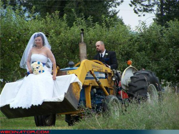 Funny Wedding Pictures Damn Cool Pictures