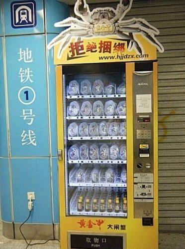 http://1.bp.blogspot.com/_mmBw3uzPnJI/TOEF4QWwNaI/AAAAAAABvs8/M1b5GysJMEA/s1600/live_crab_vending_machine_02.jpg