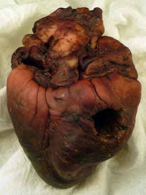 [Image: mummified_vampire_heart_05.jpg]