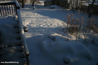 snowfall as of Devember 5 8:40 AM