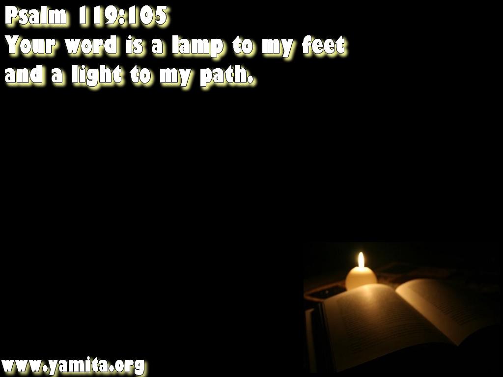 Light of my path
