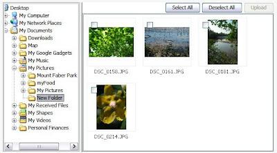 Picasa facebook uploader download latest version 100 facebook uploader