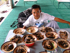 willhelmus alias Mang Dadang