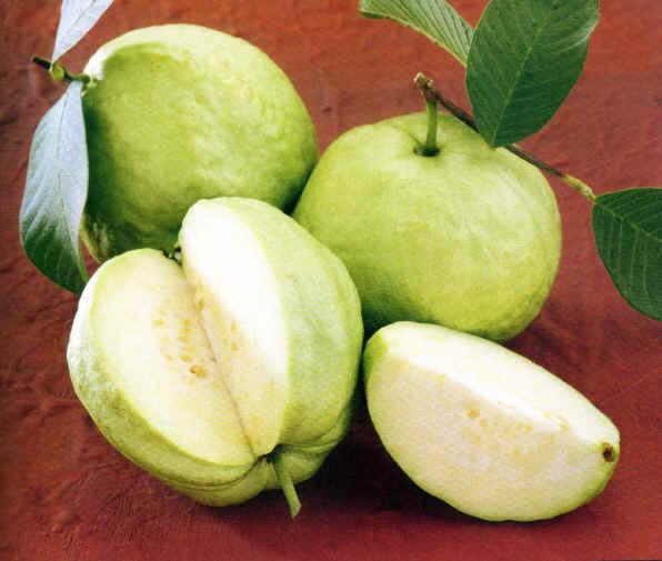 Guava Curry/Peru Curry Recipe