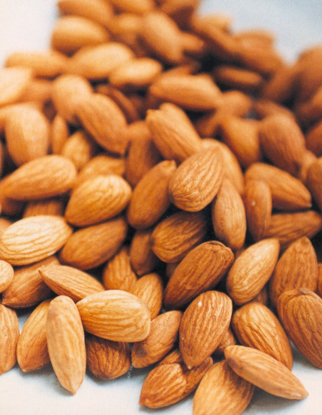EcoCurious: Making A Really Good Thing Bad for You Almonds