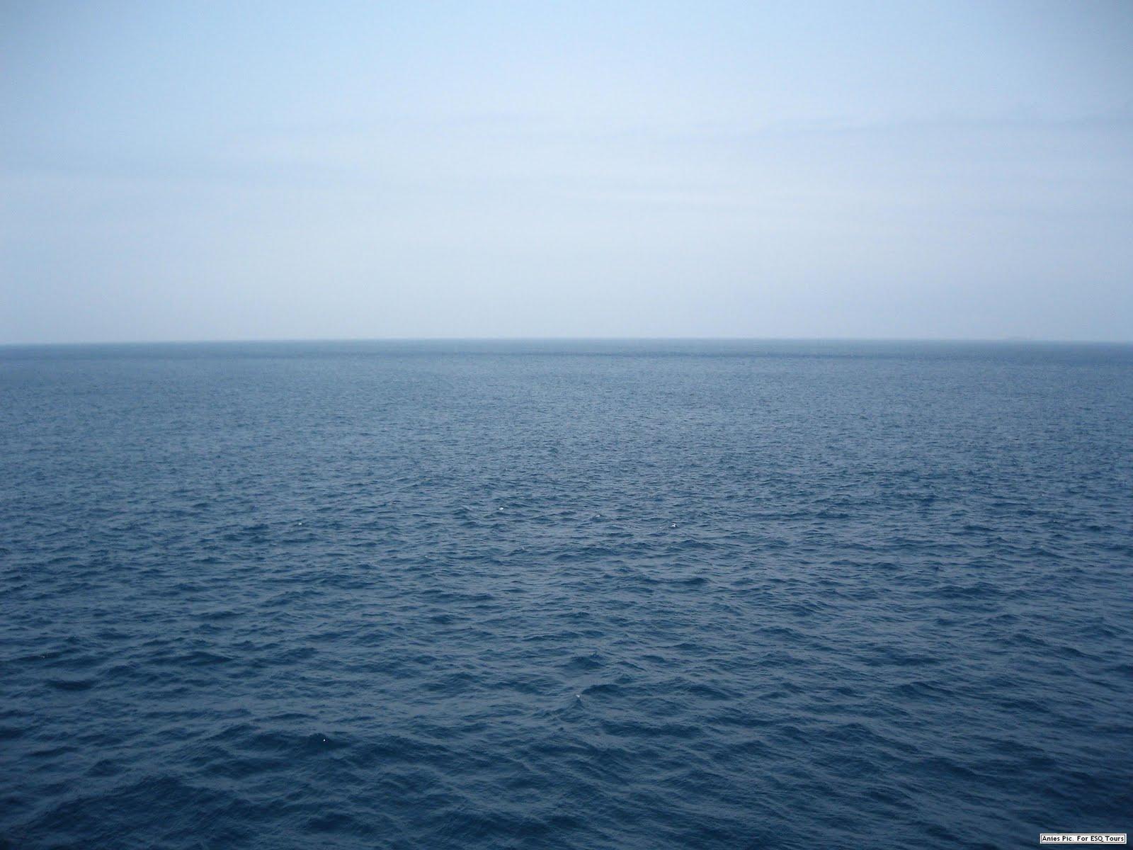 Lautan merupakan habitat terbesar di bumi. dibalik selubung