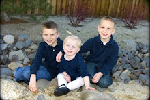 Brayden, Colby & Lily