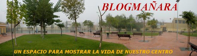 Blogmañara