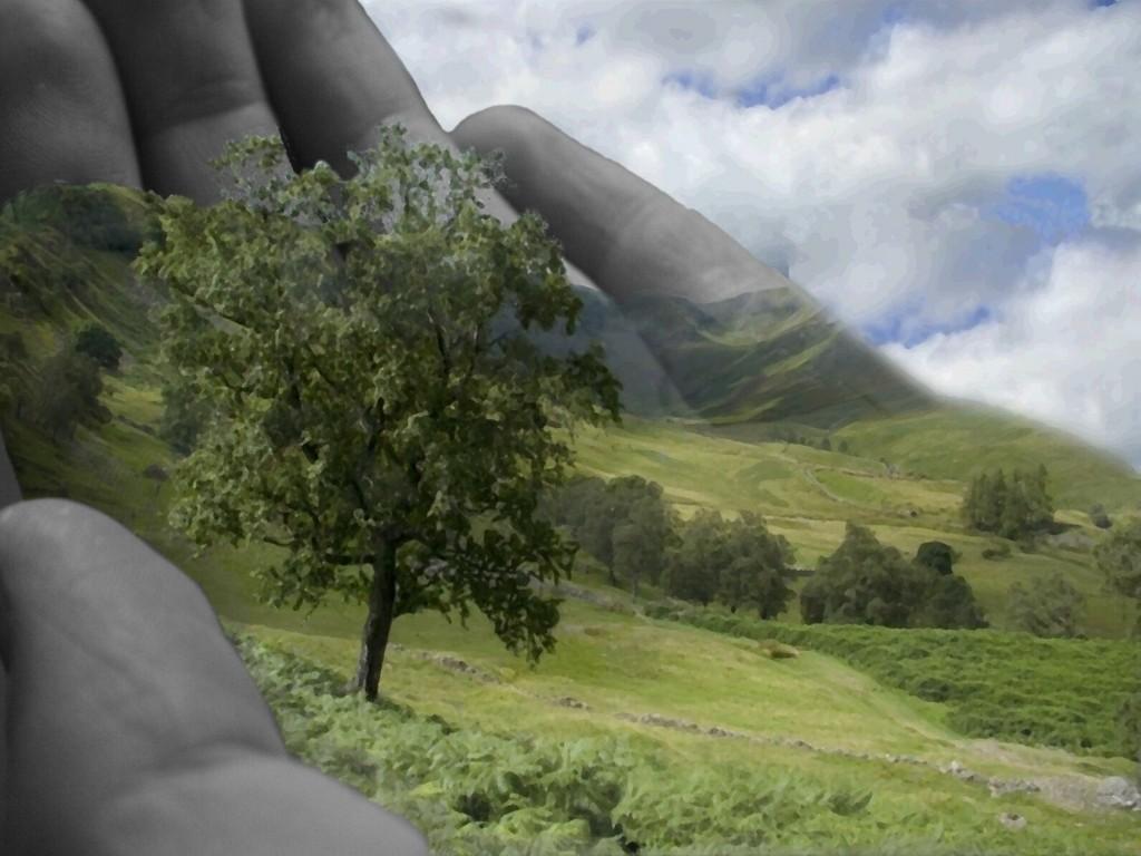 Natureza na mão - Do que precisamos para ser feliz? Não precisamos de mais nada - Psicologia